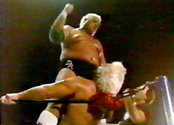 Ric Flair  wrestling