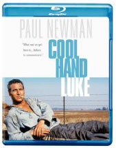Cool Hand Luke on Blu Ray