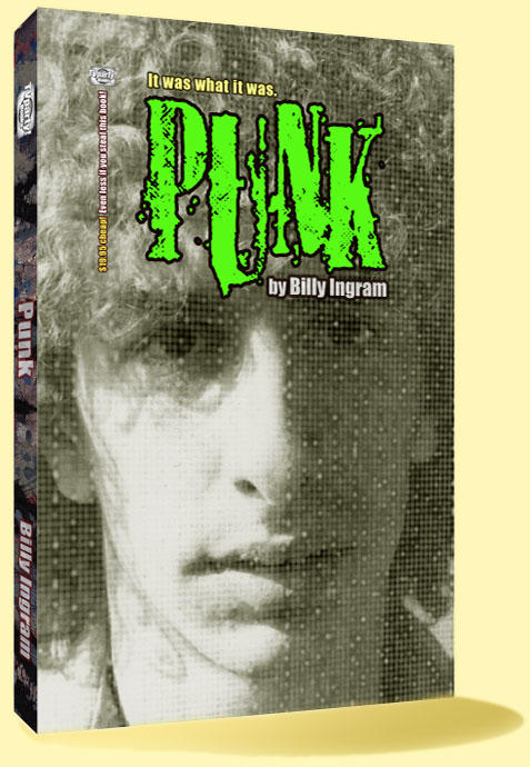 Punk / Punk Rock Book by Billy Eye