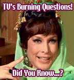 TV's Burning Questions!