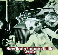 Shows Nobody Remembers