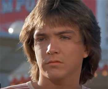 Partridge Family David Cassidy theme park