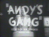 andy's gang