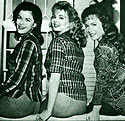 Petticoat Junction was a big hit in 1964, a spin-off from The Beverly