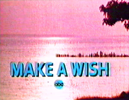 Make A Wish TV show